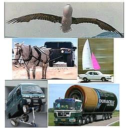 Las fotos que circulan en mail sobre EnergiaTotal