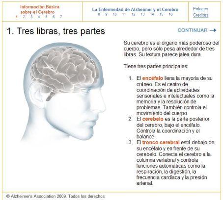 La Guía del Cerebro es propiedad intelectual de la Alzheimer's Association.